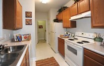 Lots of Kitchen Surface Space